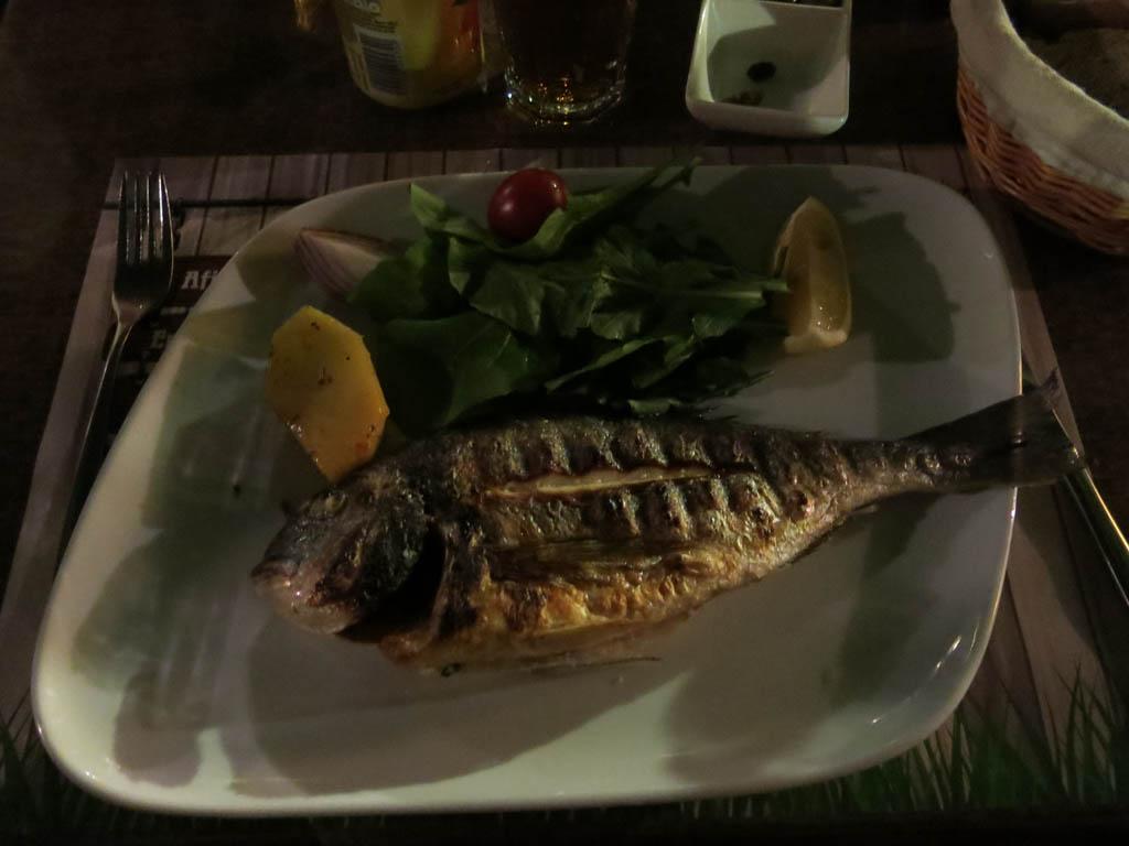 mmm... fishy