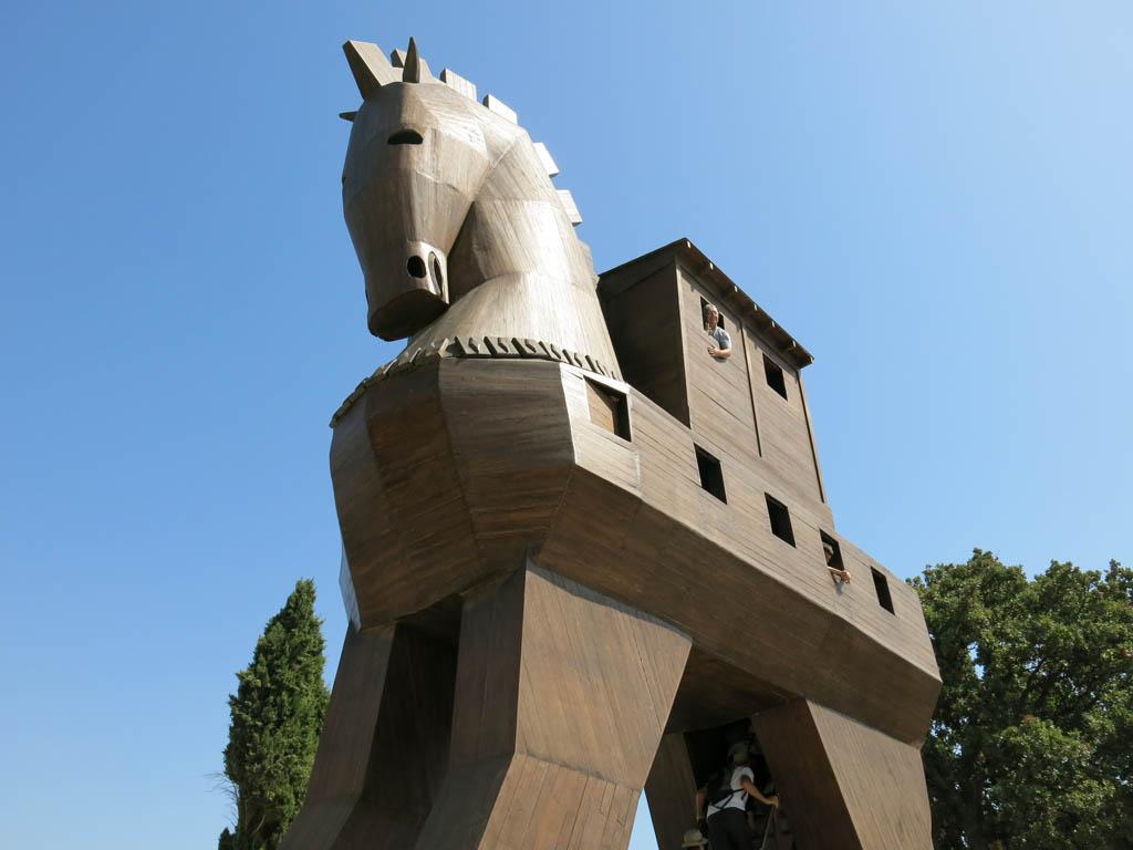 that's a big horse!