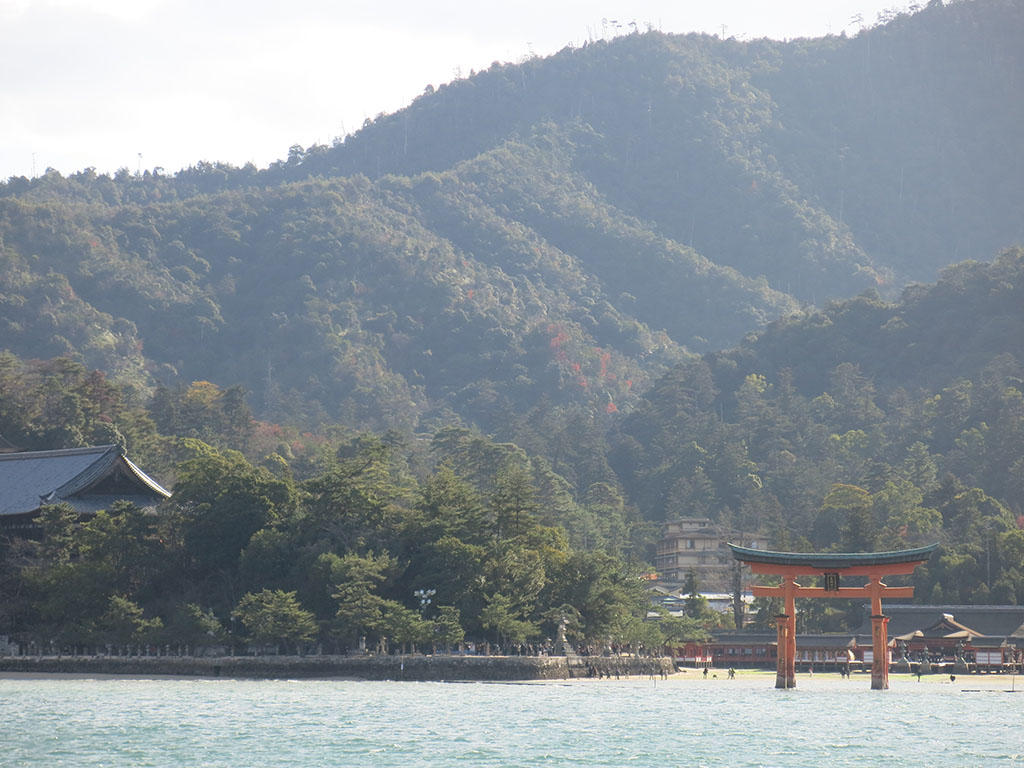 approaching the famed torii